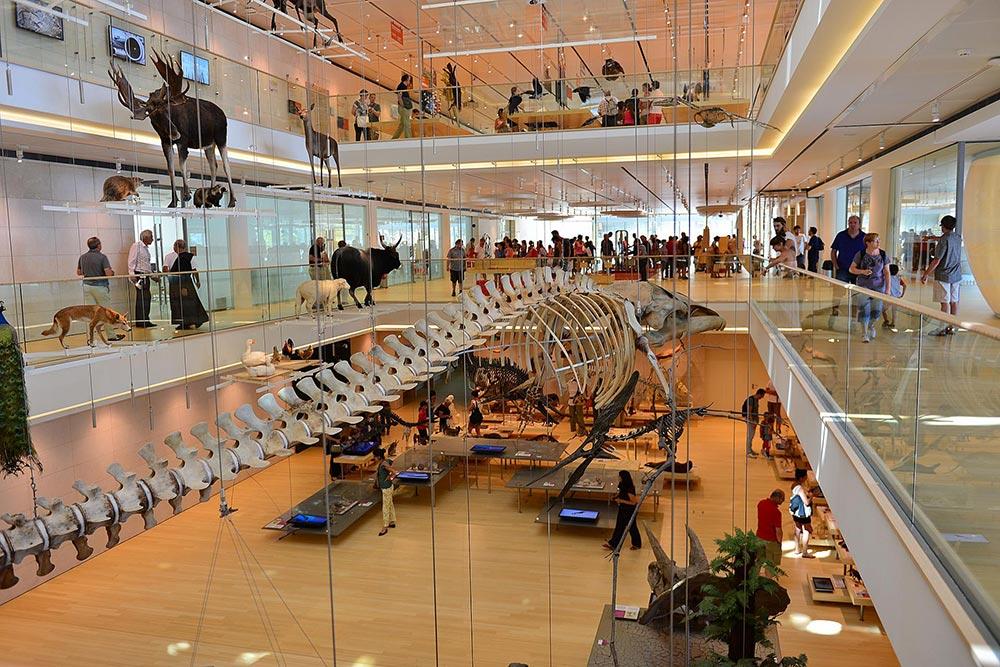 Trento - Museo della Scienza MUSE